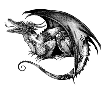 3d tattoo: Dragon Tattoo Designs