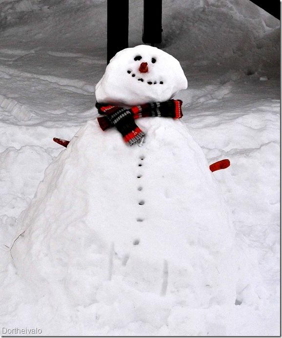 snemand