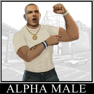 Be Alpha Dominant Male Cover