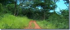Road to Kalambo 2