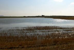 laguna en Bargas Toledo