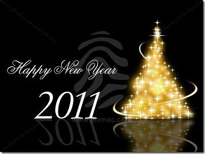feliz año nuevo (16)