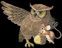 animales misimagenesdivertidas.blogspot (9)