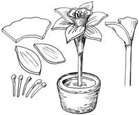 flores de arcilla (8)