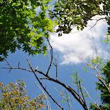 駒止中休止。毎回1時間登ったここで一度、空を見ながら休憩します。