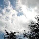 天神平の空。この日は気温も風も気持ちよくて、空を見上げることが多かった。