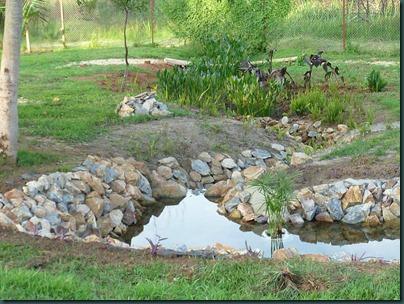Landscaping Dec. 2010 053