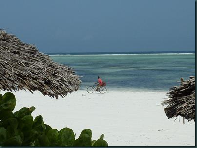 Zanzibar 155