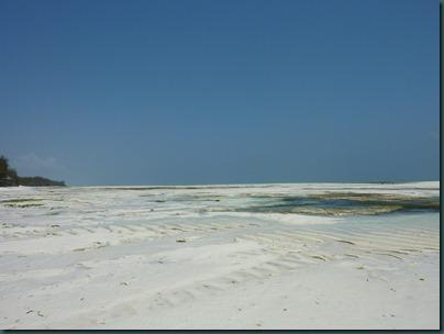 Zanzibar 339