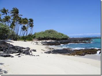 ハワイ島・ダイビング