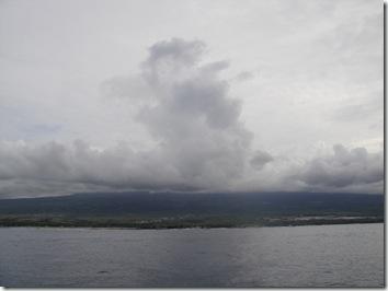 フアラライ・ハワイ島・イルカ・ドルフィンツアー