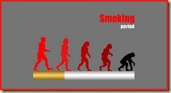 Fumo 01