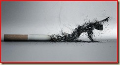 Fumo 03