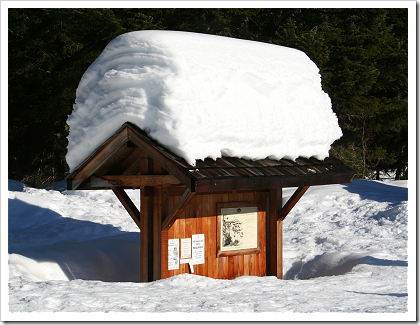 Gold Creek: snow covered kiosk