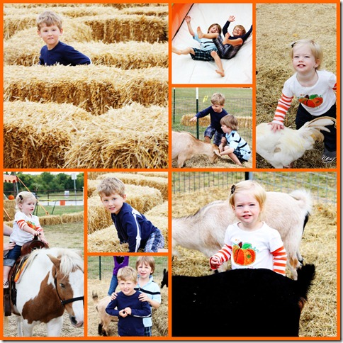 Pumpkin Patch 2010