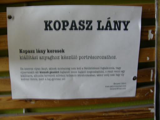 Keleti Blokk,  Magyar Dal napja,  2010, Budapest, Ajtósi Dürer sor, applied art, kocsma, buli, koncertek, kopasz lány