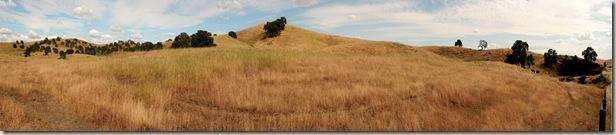 z grassland Panorama1RS