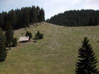 Travniki pod Kočo na Dobrči