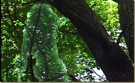 predator-camo