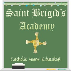 StBrigidsAcademy Logo