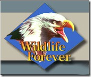 WildlifeForever