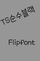 Screenshot of TSpureblack Korean FlipFont