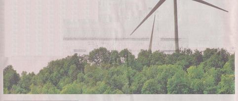 fons de verd e d'eolianas