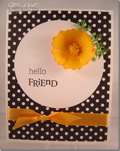 california-poppy-friend