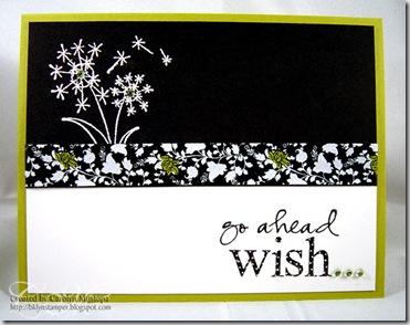 unity-wish1