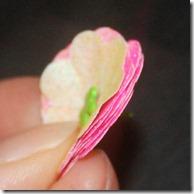 petals-brad