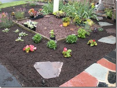 garden 6-18 014