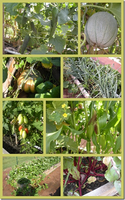 Yard-Garden