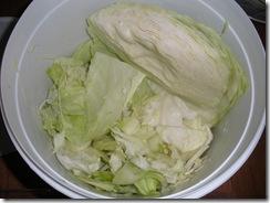 Sauerkraut 101 029