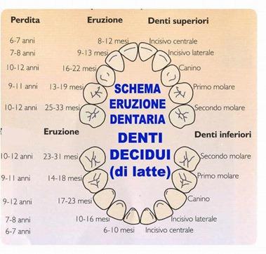 denti_latte