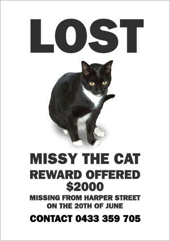 missing_missy4