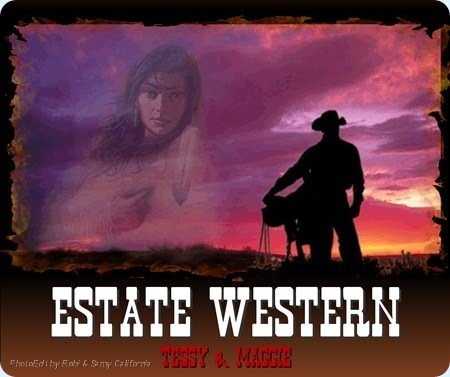 0 Estate Western Post firme
