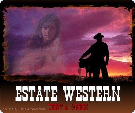 0 Estate Western Post firme