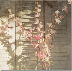 sunlitflowersklassengrunge