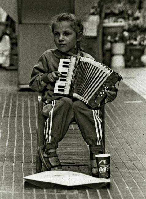 486 acordeonista