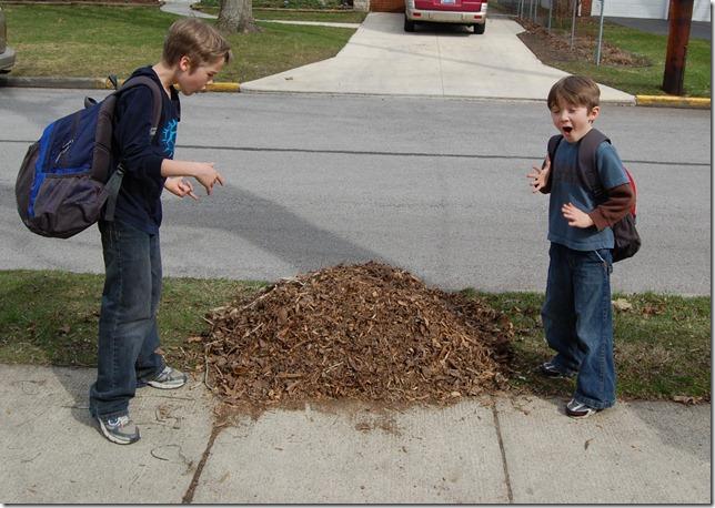 boy eating leaf pile