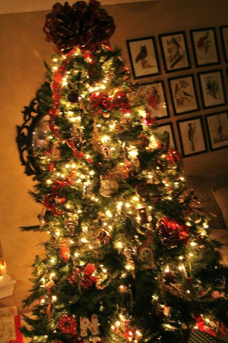 Christmas 2010 022