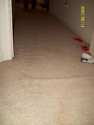 [carpet bubbles[2].jpg]