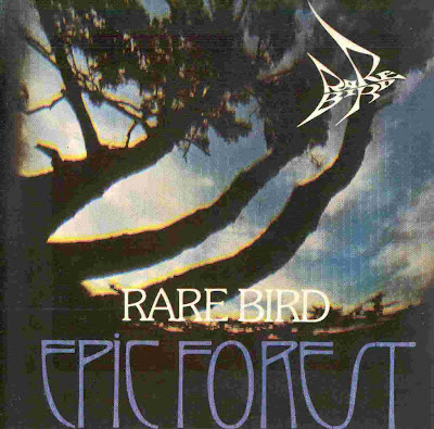 Rare Bird ~ 1972 ~ Epic Forest