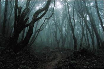 Top 10 Bizarre Fears & Phobias 06