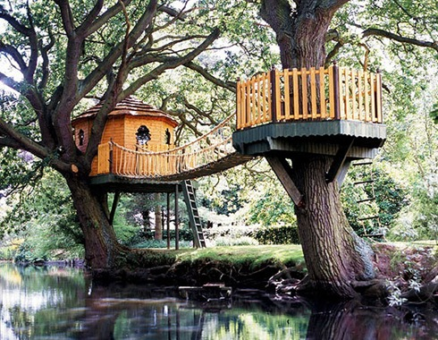 Amazing Tree Houses Around The World 08