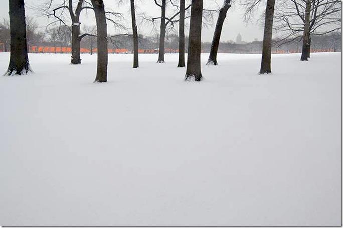 Joseph O. Holmes - Central Park