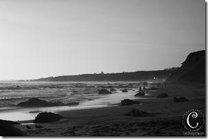 laguna beach-33