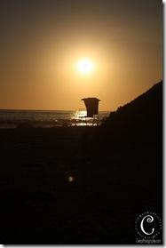 laguna beach-36
