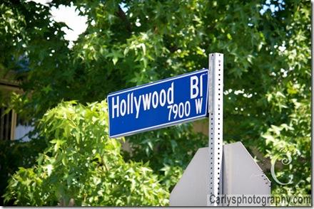 Holywood-11