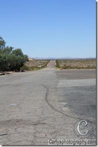 Mojave Desert-3